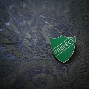Jewelry - 》SOLD《 Slytherin prefect badge